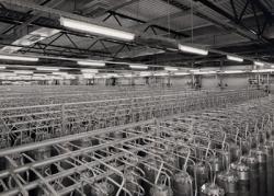Opstelling van centrifuges